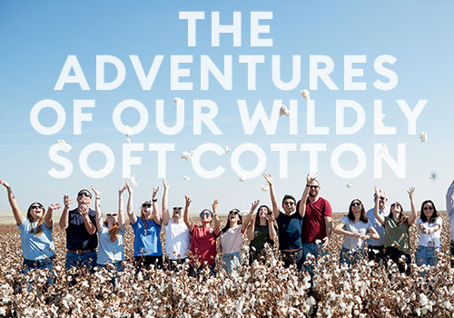 The Adventures of Our Wildly Soft Cotton | Banana Republic | Muse Awards